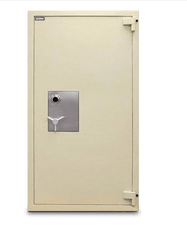 Mesa MTLE7236 TL-15 Fire Rated Composite Safe