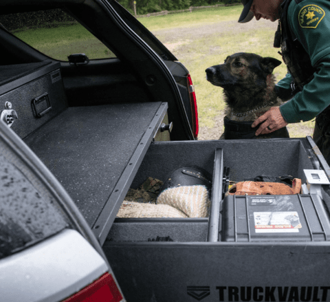 Truckvault Investigator Commander Line Armadillo Safe and Vault