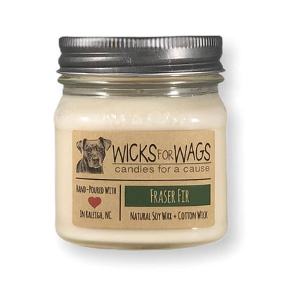 Wicks for Wags - *WINTER* Fraser Fir / Soy Candle