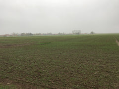 Clay fields looking towards Harbonniers, the scene of fierce fighting and trench warfare during W