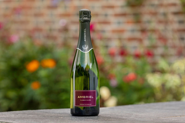Ambriel English Sparkling Wine Classic Cuvee