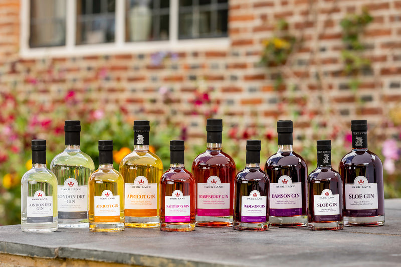 personalised fruit and london dry gins | branded gin park lane