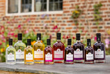 Selection of personalised fruit and london dry gin bottles
