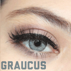Batis Mumu Graucus - Batis 46 Lens - Softlens Queen - Natural Colored Contact Lenses