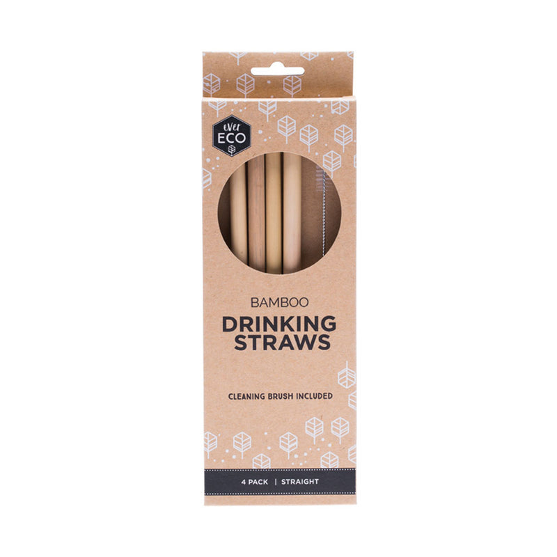 Bamboo Straws | Set of 4