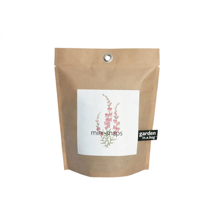 Plant | Snapdragon Garden In A Bag