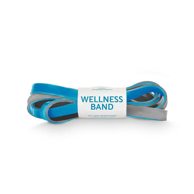Wellness Stretch Resistance Bands Set