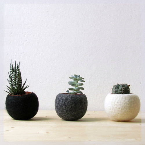 Hygge decor/Succulent planter/air plant holder/cactus pot/plant vase/modern decor/set of 3
