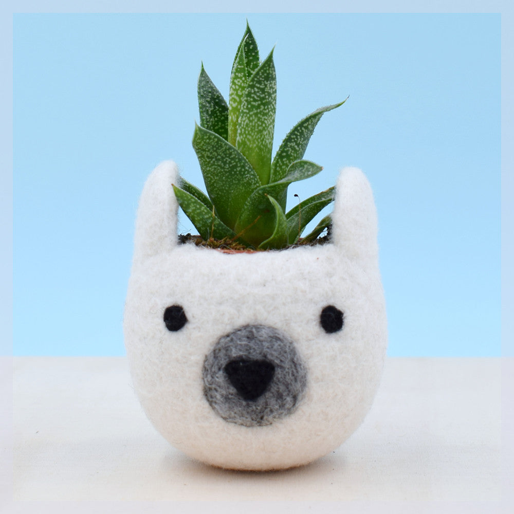 Succulent planter/white bear planter/cactus pot/succulent vase/ mini planter/Bear lover gift/nursery decoration