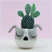 Dog Succulent planter