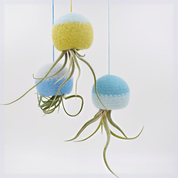 Air planter/ Octopus air plant hanger/hanging planter gift/Unique Air plant holder/Air plant jellyfish/tillandsia/Set of three