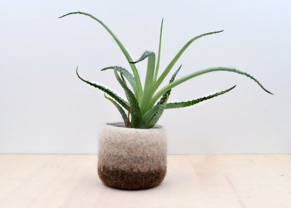 Felt succulent vase/Earth/felted planter/cactus vase/Ombre brown/housewarming gift/gift for her