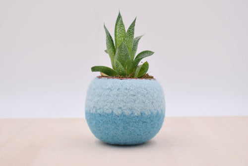 Succulent planter/Felt plant vase/felted bowl/Succulent pod/something blue/ gift for her/7th anniversary gift