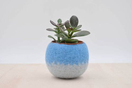 Succulent planter/Felt plant vase/felted bowl/Succulent pod/gift for her/windowsill planter/7th anniversary gift
