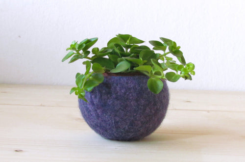Succulent vase/Plant pod/felted bowl/air plant vase/purple fall grape/housewarming gift