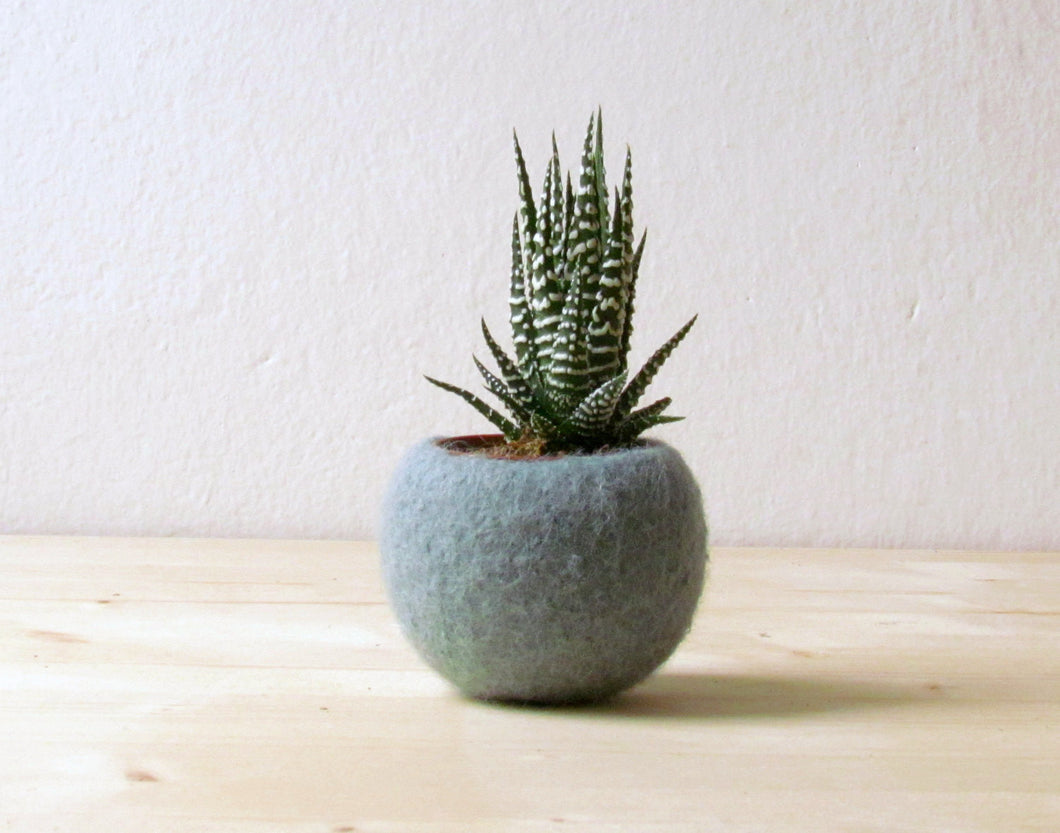 Succulent planter/air plant holder/cactus pot/plant vase/modern decor/winter decor