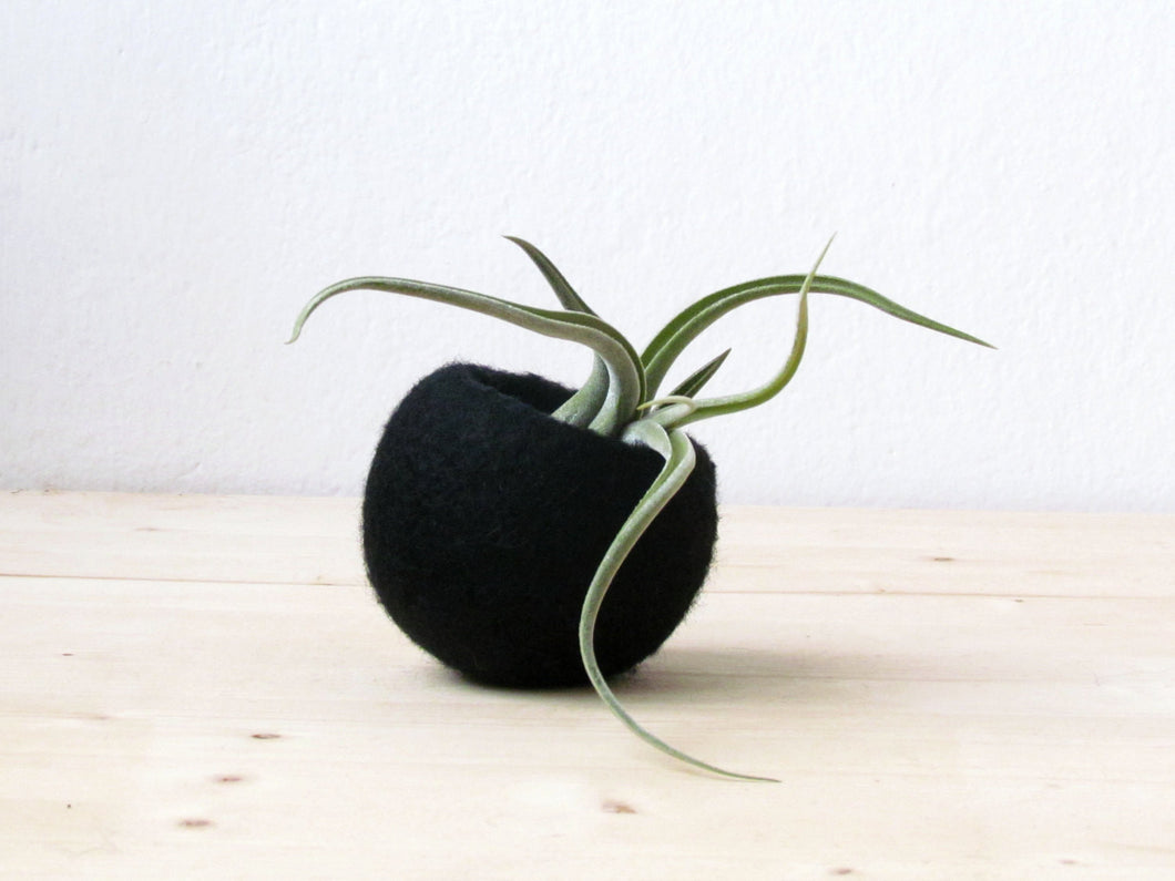 Succulent planter/air plant holder/cactus pot/plant vase/modern decor/desk accessories