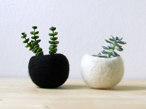 Succulent planter/Best friends forever planter/air plant holder/cactus pot/plant vase/modern decor/set of 2