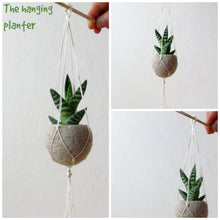Hanging planter/Macrame plant hanger/Beige Felt planter/air plant vase/ modern home decor/CHOOSE YOUR COLOR