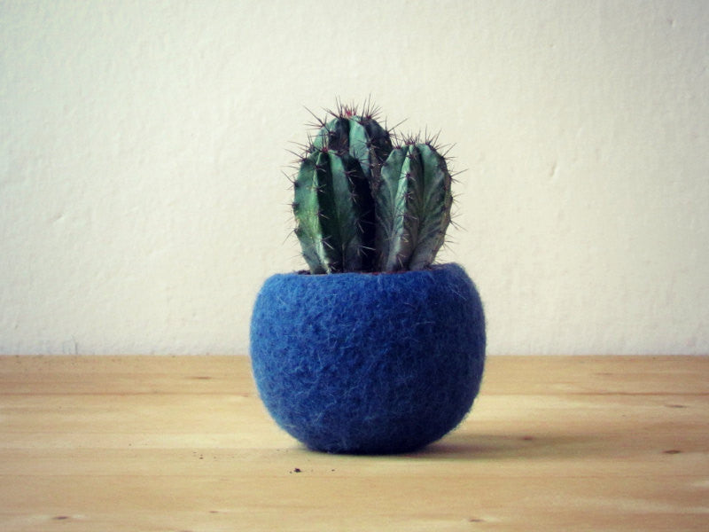 Succulent planter/air plant holder/cactus pot/plant vase/modern decor/housewarming gift