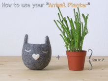 Cute plant pot/gift for her/Felt succulent planter/Neko Atsume special edition/Grey cat vase/Cat head planter/Kawaii kitty gift