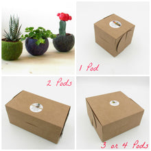 Modern planter/Felt succulent planter/Wedding favor/Cactus terrarium/felt vase/gift for coworker/Make your own collection!