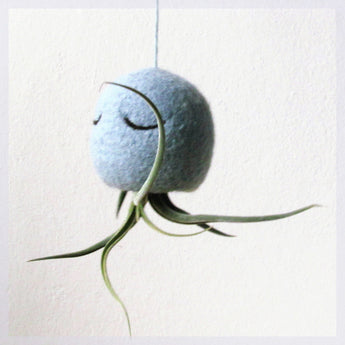 Air planter/Aqua air plant/hanging planter gift/Unique Air plant holder/Air plant jellyfish/ Octopus air plant hanger/tillandsia