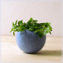 Felt succulent planter/felted bowl/Succulent pod/light blue/mother day gift