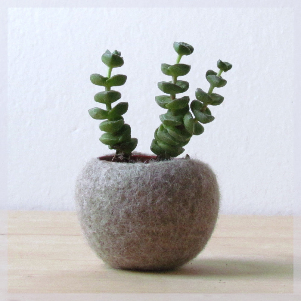 Felt planter/hygge decor/felted bowl/Succulent pod/scandinavian decor/minimalist home decor /air plant vase