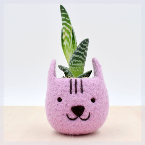 Neko Atsume planter special edition/Felt succulent planter/Cat head planter/Valentine day gift/gift for her