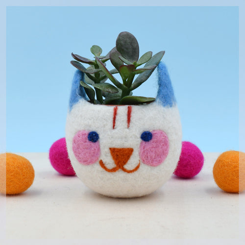 Maneki neko indoor planter