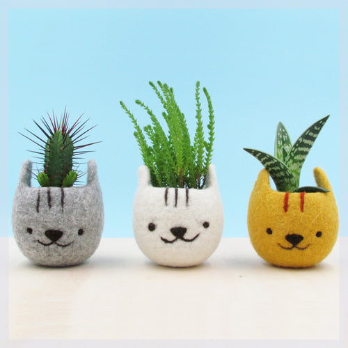 Girlfriend gift/Felt succulent planter/Neko Atsume/Kitty collector/Cat head planter/Kawaii cat gift/Set of three