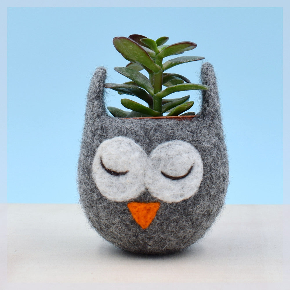 Succulent planter/Owl planter/cactus pot/Owl vase/ mini planter/Owl lover gift/gift for her