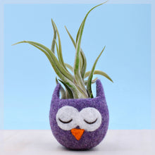 Owl lover/succulent planter/mini planter/birthday gift/cactus vase/plant pot/housewarming gift/cute cactus planter