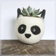 Felt succulent planter/panda planter/cactus planter/gift for her/desk decoration/succulent lover/cute cactus planter