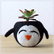 Desk accessories/Succulent planter/penguin planter/cute cactus planter/gift for her/happy penguin/indoor planter/plant pot