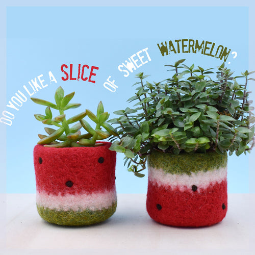 Watermelon vase/Felt succulent planter/summer gift/felted planter/cactus vase/Set of 2/cabin decor/gift for her
