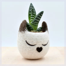 Planter/Succulent planter/Siamese cat mini planter/Head cat planter/indoor planter/Small succulent pot/cat lover gift for her