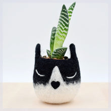 Succulent planter/Tuxedo cat mini planter/ Cat head planter/indoor planter/Small succulent pot/cat lover gift/gift for her