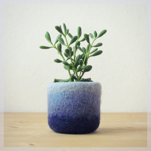 Aqua air plant planter/Felt succulent planter/mini plant vase/cactus vase/Ombre blue/air plant gift/gift for her/gift for wife