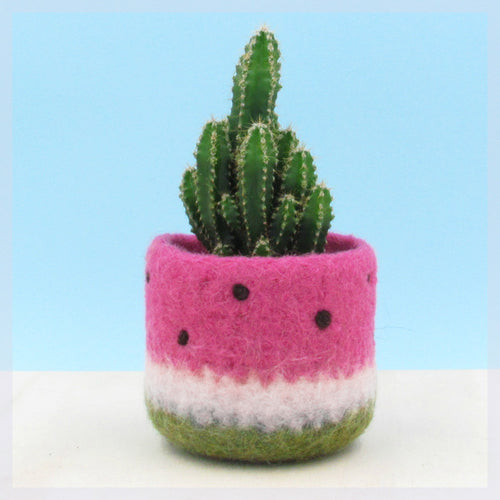 Watermelon vase/Felt succulent planter/summer gift/felted planter/cactus vase/housewarming gift/cabin decor/gift for her