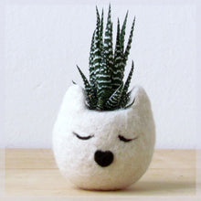 Cat planter/Small pot for succulents/white Cat head planter/Felt succulent planter/cat lover gift/Gift for her