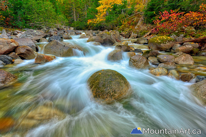 enterprise creek kokanee glacier park flowing water autumn