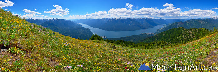Idaho Peak wildflowers panorama Slocan Lake and Valhalla park