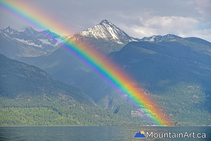 kootenay lake rainbow fry creek canyon bc