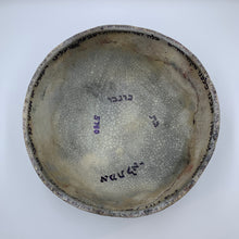 Thriving in Place: Susan Duhan Felix - Blessing Bowl to End Plague