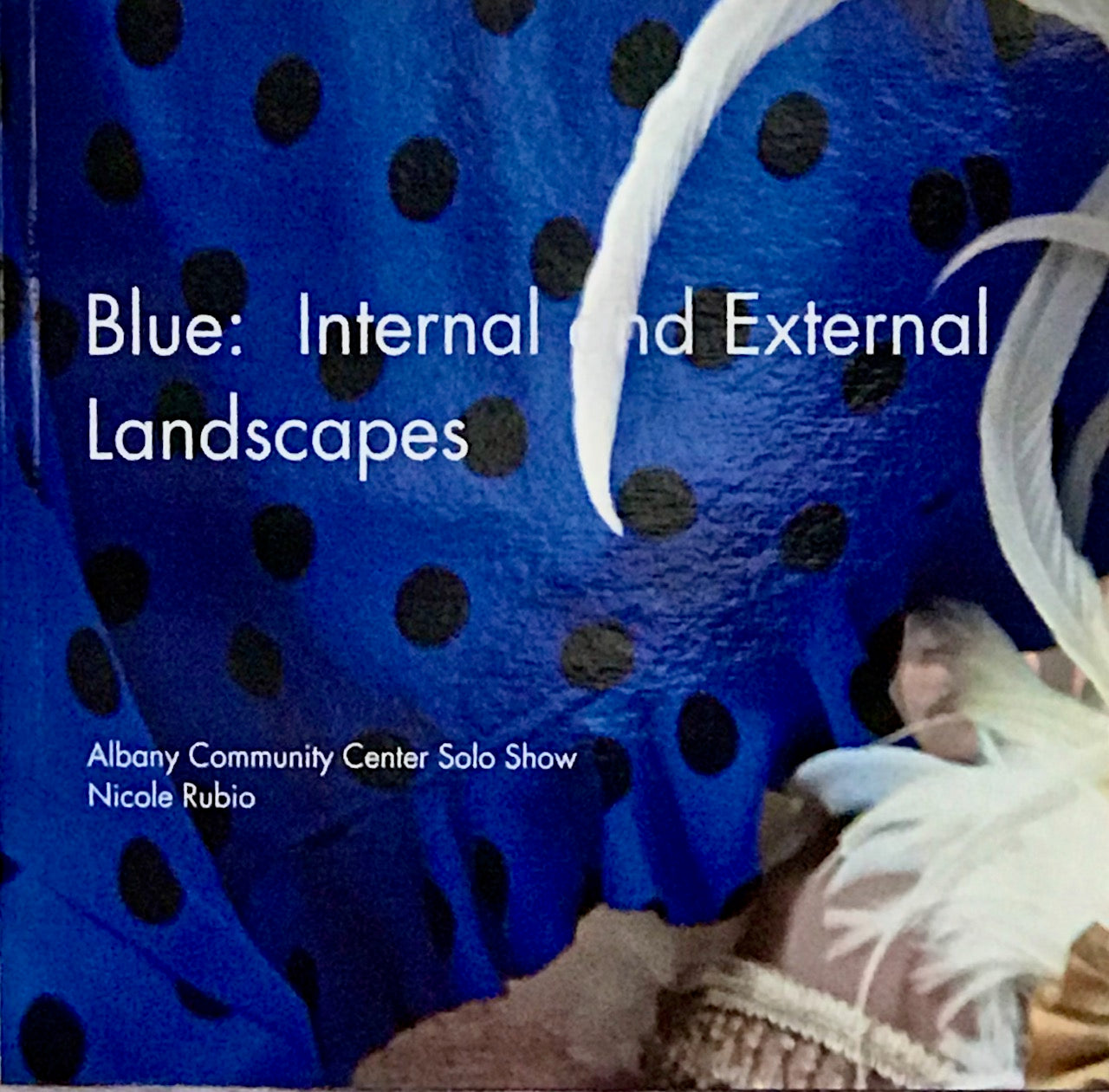 Nicole Rubio: (S)Blue: Internal and External Landscapes