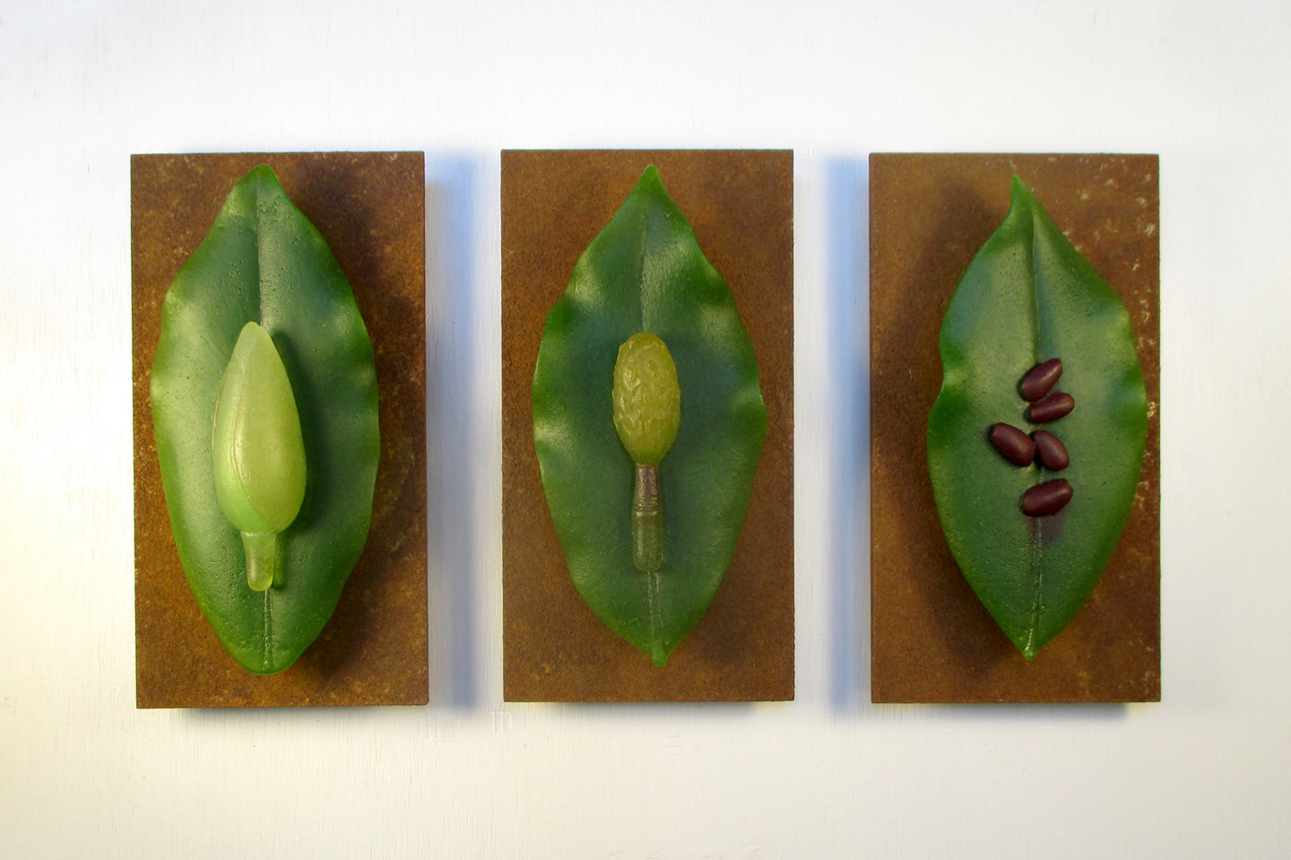 Particles-Ellen Abbott: Magnolia Leaves with Flower Bud, Nascent Seed Pod, and Seeds