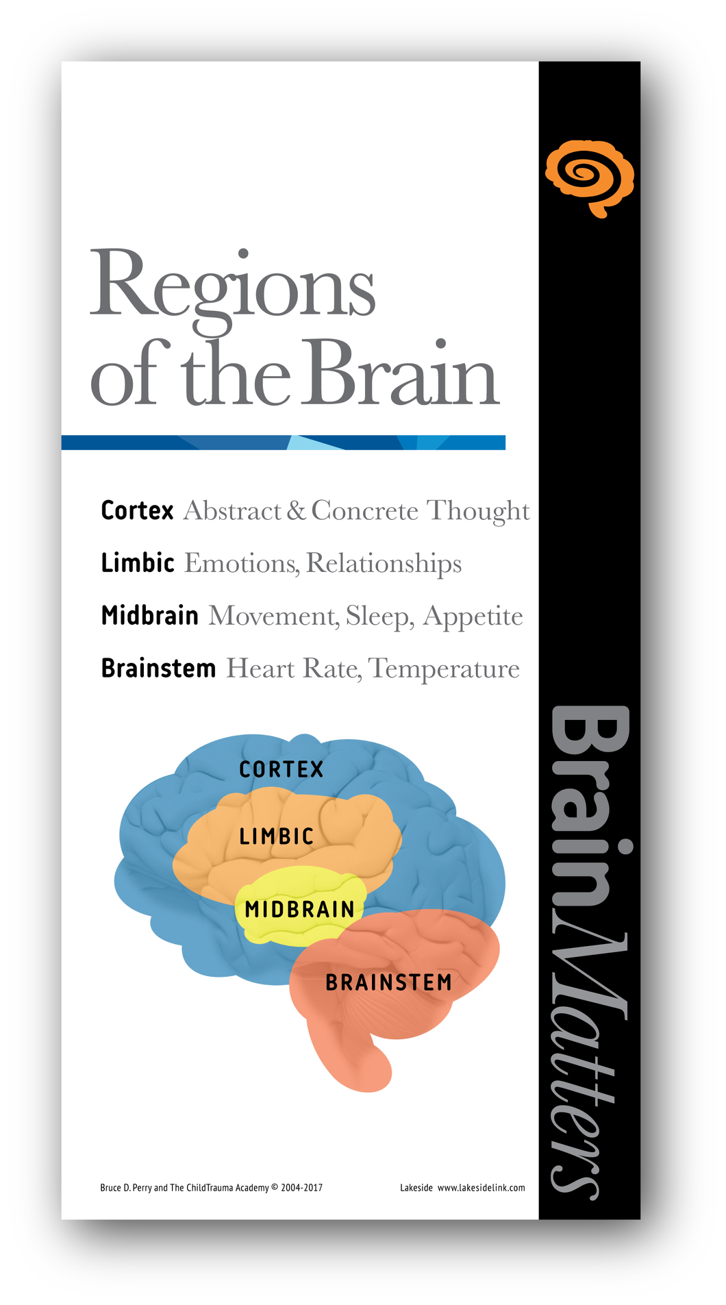 Brain Matters - Small Poster