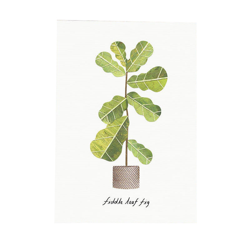 Fiddle Leaf Fig card
